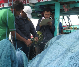 Cek Fisik Kapal Dan Alat Penangkapan Ikan