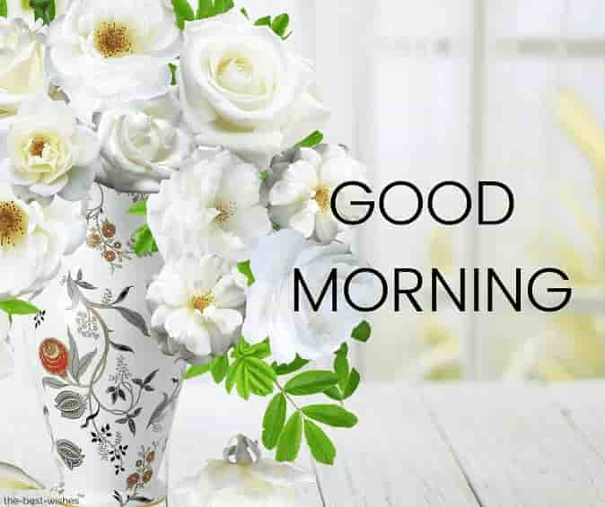 good morning wishes images with rose flowers vase