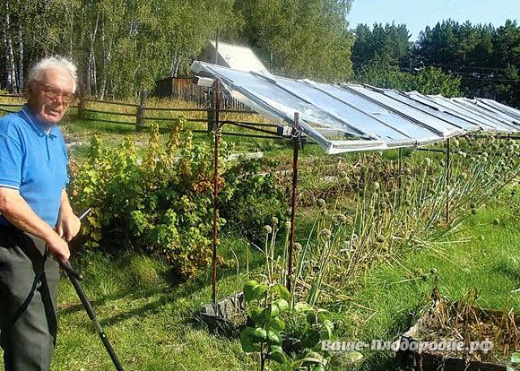 Умный огород Замяткина: участок не знает лопаты уже 20 лет новые фото