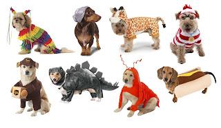 Perros y sus disfraces de Halloween