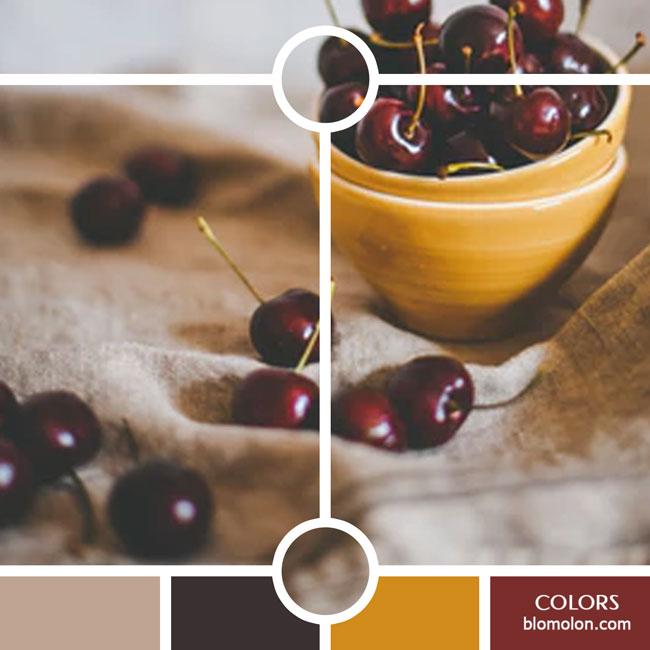 variedad_en_color_color_36