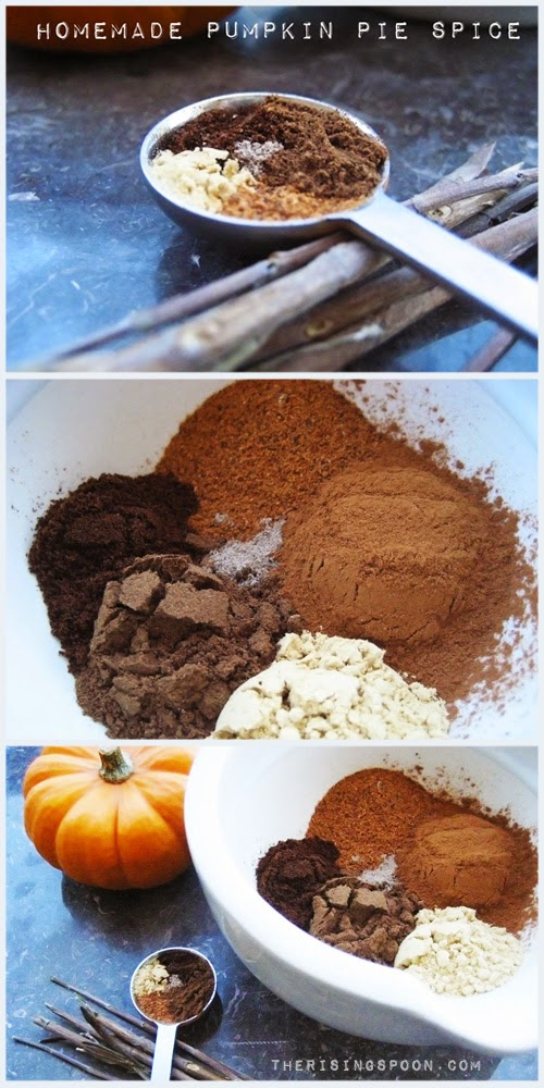 Homemade Pumpkin Pie Spice Recipe | therisingspoon.com