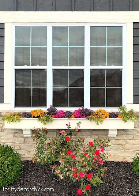 colorful fall long window box