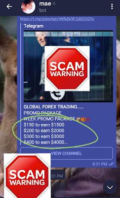 Telegram scam trading channel