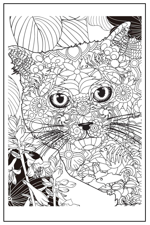 Download Wallpaper Coloriage chat adulte à imprimer