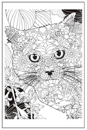 Coloriage chat adulte à imprimer