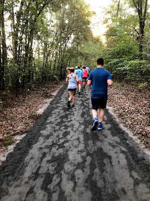 Training, Travels and Thoughts of a Running Sensei: 2018