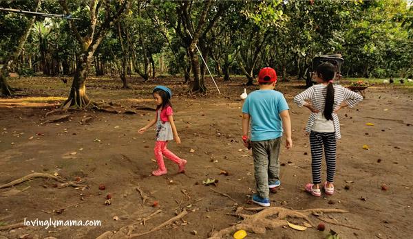 MARADULA Festival - JKN Fruit Farms - Talisay City -fruit orchard - lanzones - rambutan - durian- marang - eat all you can lanzones - eat all you can rambutan- Negros Occidental - family travel - Bacolod blogger - Bacolod mommy blogger - Bacolod City - father and daughter - farm visit - field trip