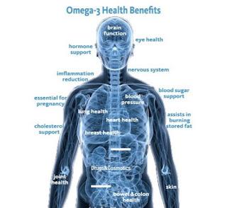 اوميجا 3, اوميجا 3 للاطفال , فوائد اوميجا 3 , اضرار اوميجا 3, فوائد اوميجا 3 للحامل , اوميجا 3 لكمال الاجسام , اوميجا 3 والتركيز , الكليسترول