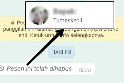Membaca Pesan WhatsApp yang Ditarik dengan Mudah
