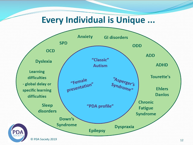 Circles diagram showing autism conditions in the middle circle and related, co-morbid, non-autistic conditions in outer circle