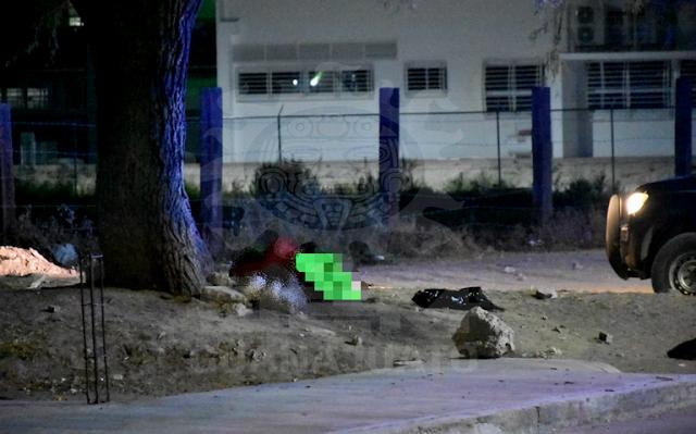Grupo Elite del CJNG levanta, descuartiza y riega los restos de Diana en Celaya