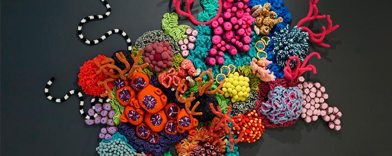 Defensa de la identidad transgénero en fondos marinos de crochet