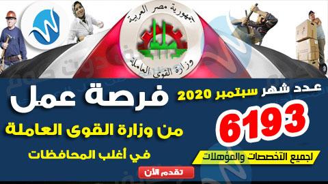 وظائف وزارة القوى العاملة 2020 اعلان عدد 6193 فرصة عمل جديدة ضمن النشرة القومية للتشغيل لشهر سبتمبر 2020