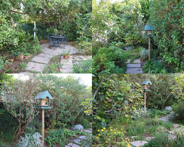 Moved the bird feeder