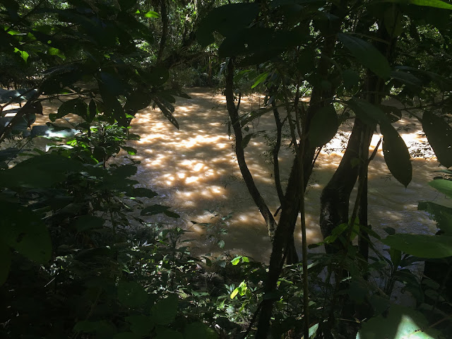 Rio Claro Reserva Natural, Colombia