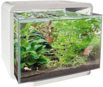 de superfish home is een direkt klaar aquarium je koopt ze met alles er op en er aan dus inclusief led verlichting met tiptoets bediening en filter