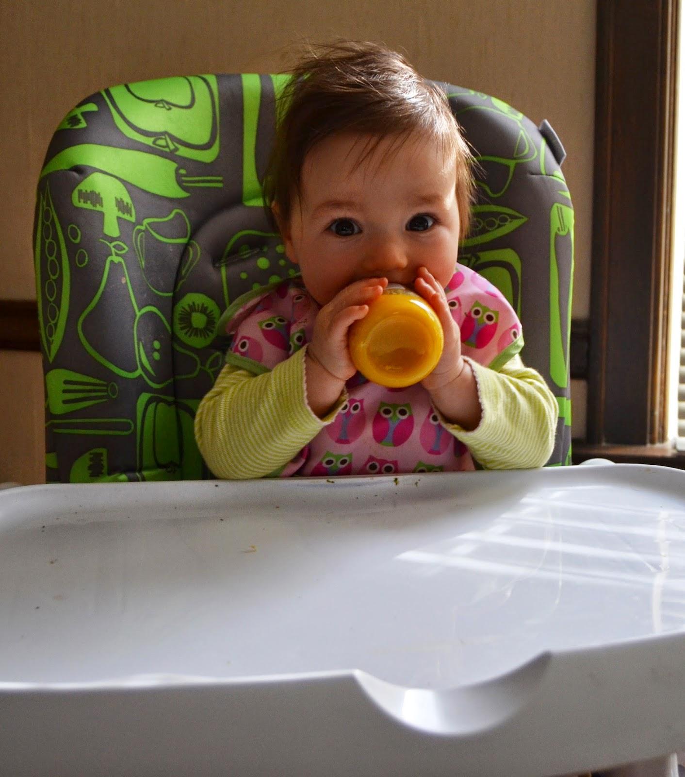 Beechnut Baby Food Reviews