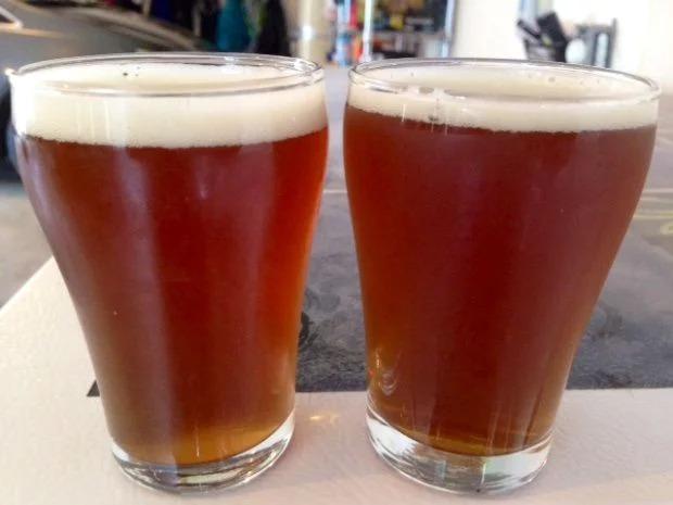 La cerveza tiene probióticos que protegen la flora intestinal y benefician nuestra salud