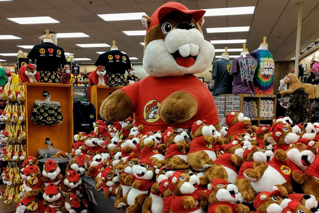 Plush buc-ee beavers at Buc-ee's convenience store located between Houston and Austin Texas