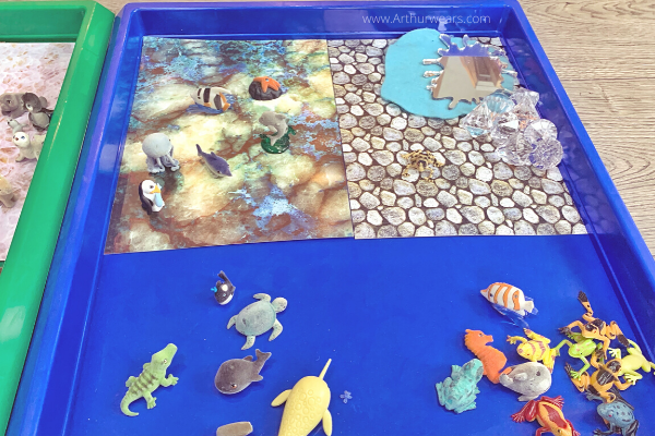 water animals Gratnells tuff tray  activity idea