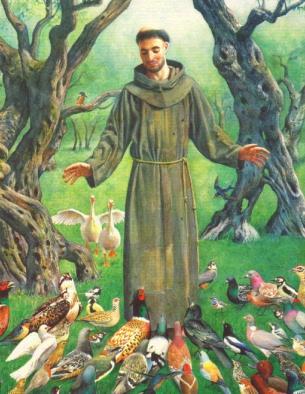 Image result for san francisco de asis