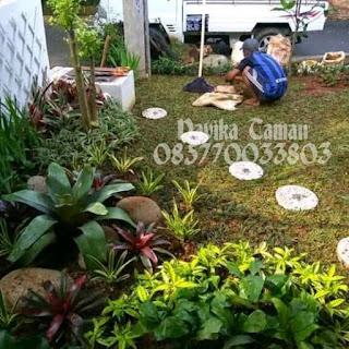 Tukang Taman Minimalis Tangerang Dan Pasang Rumput Taman