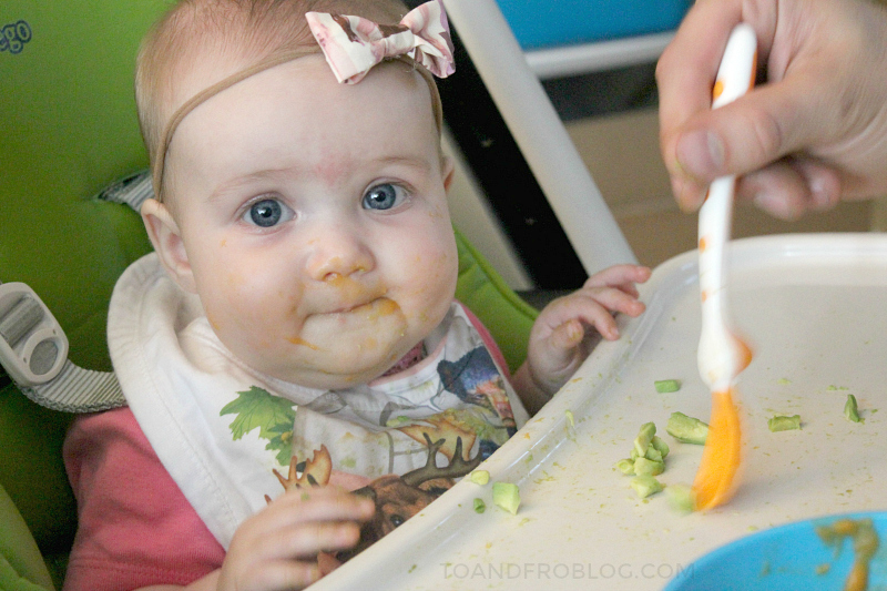 Best Baby Feeding Products + FREE Baby Food Diary Printable