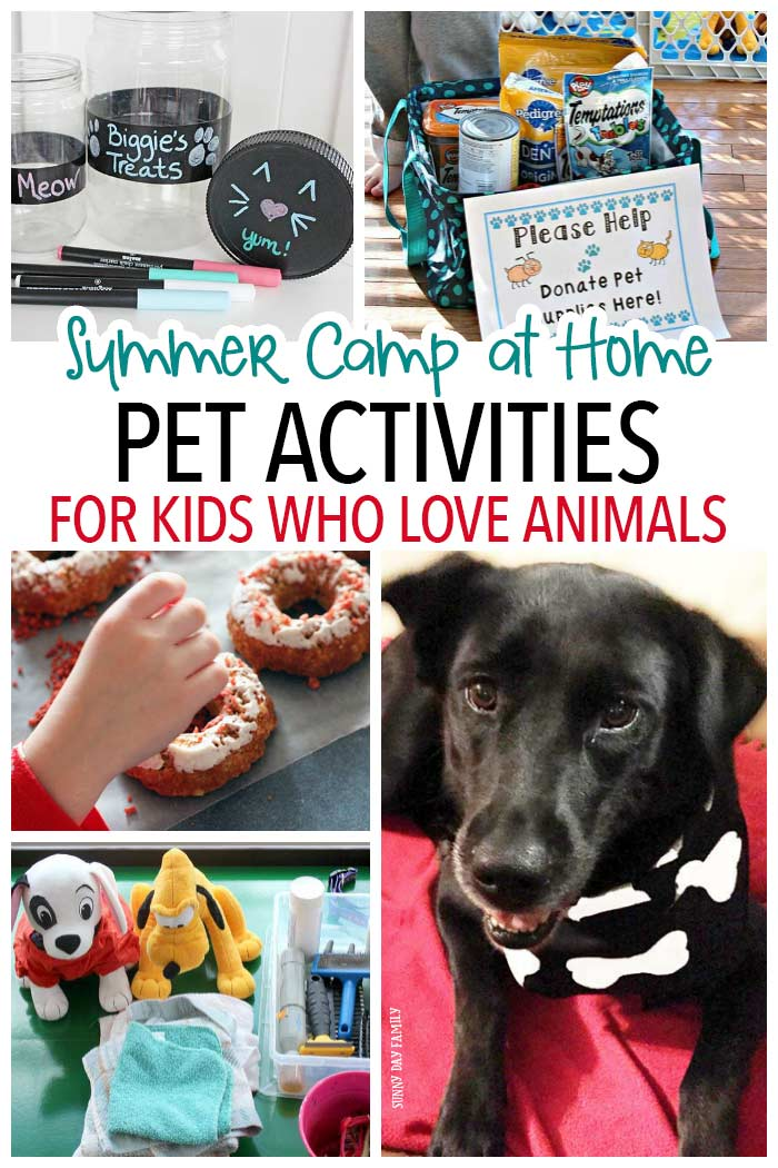 Do your kids love animals? This pet themed summer camp at home is for you! Get a week of pet activities for kids - with options for pretend pets too. Your kids will love these dog and cat activities, crafts, projects and more!