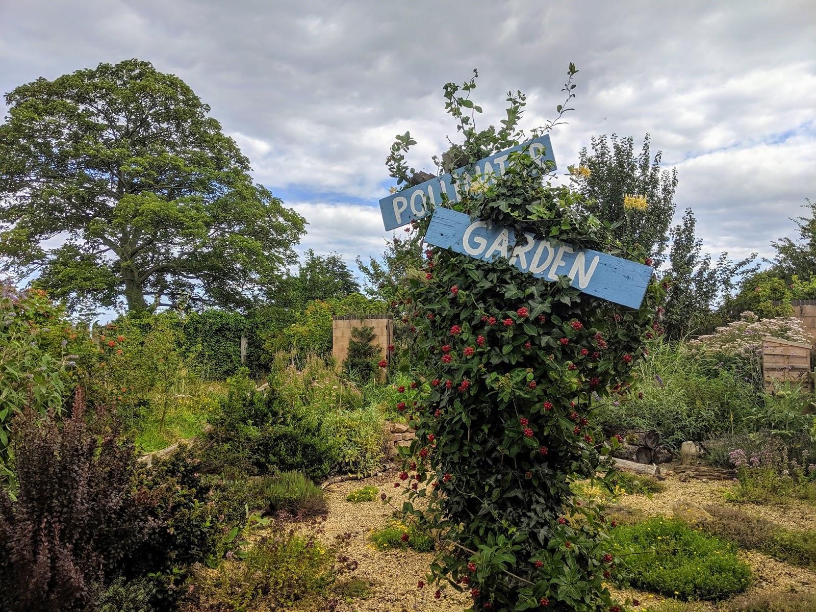 10 North East Hidden Gems to Visit this Year - RSPB Saltholme