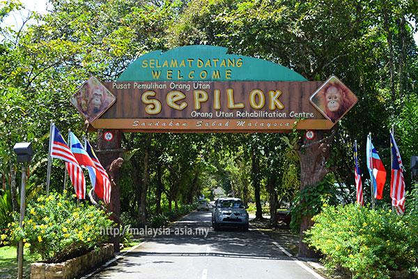 Sepilok Orangutan Centre Sabah