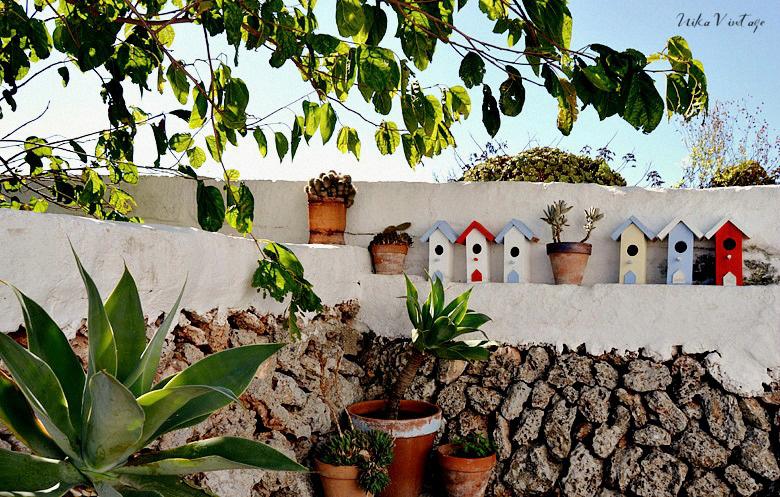 Composiciones de plantas para el exterior, cactus y crasas serán los centros de atención
