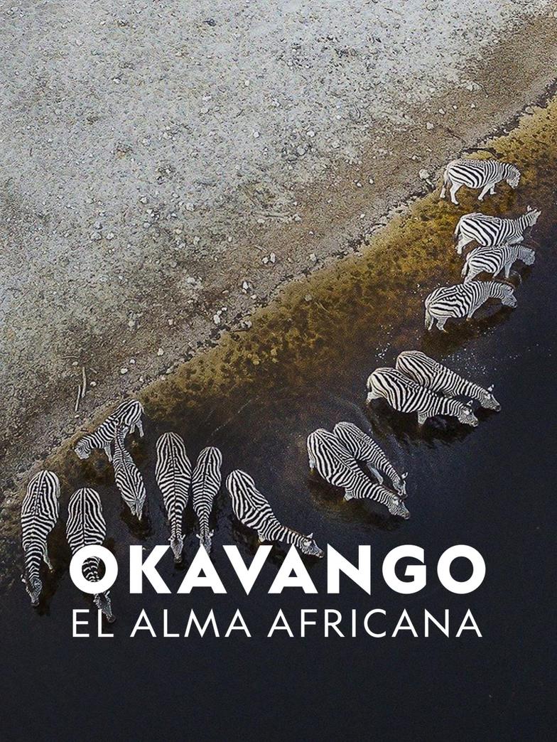 Okavango El Alma Africana (2018) WEB-DL 1080p Latino