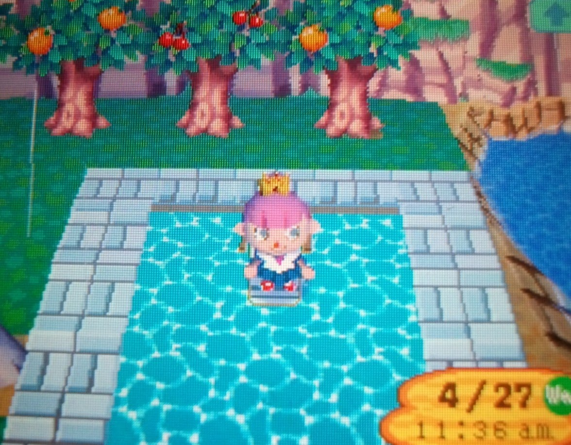Hairstyles Animal Crossing Wild World Ds