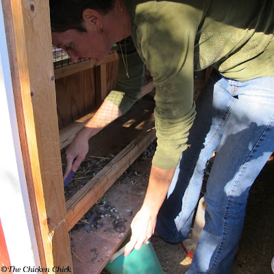 "Make the coop and run ""people friendly"" to make cleaning and maintaining it easier."