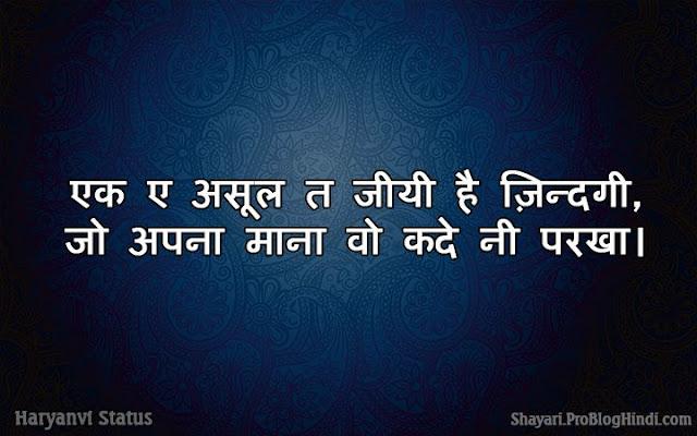 cute love status in haryanvi
