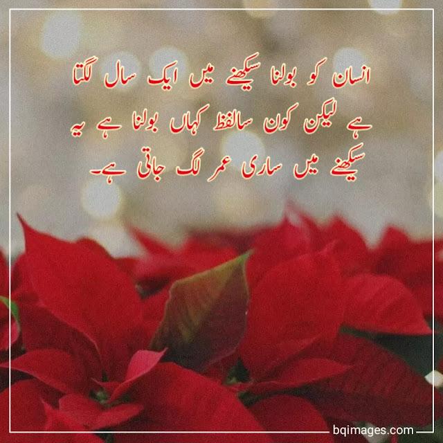 urdu quotes for dp