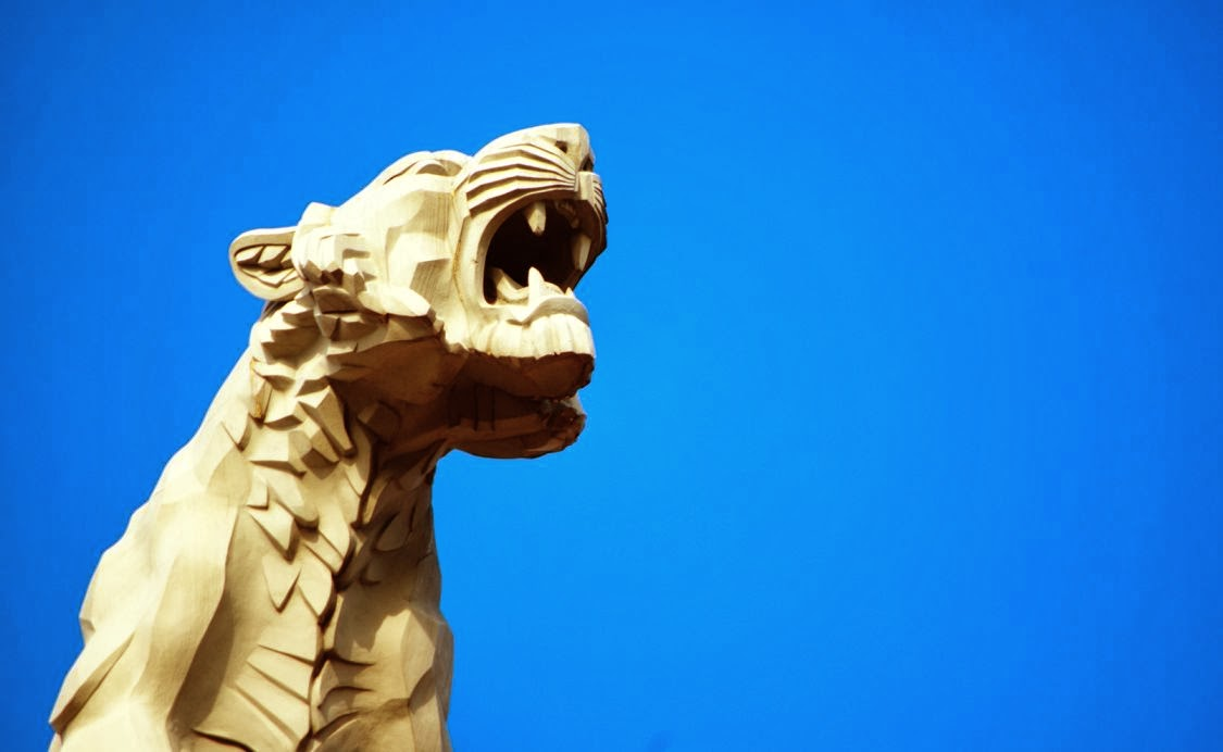 El tigre y la agresividad animal