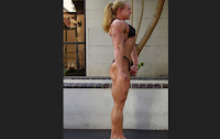 Approaches to Obtaining a Bodybuilders Physique (Part 1)