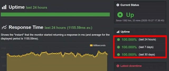 Namehero website uptime performance test using the uptime robot