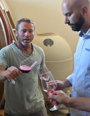clayver vino anfora