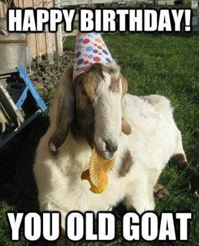 happy-birthday-old-fart-meme