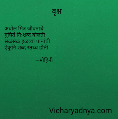 Text image for Vicharyadnya Marathi Charoli Vriksha