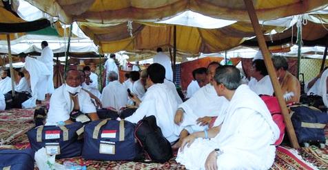 Di Padang Arafah, Jamaah Haji Diminta Waspadai Penyakit Akibat Lalat