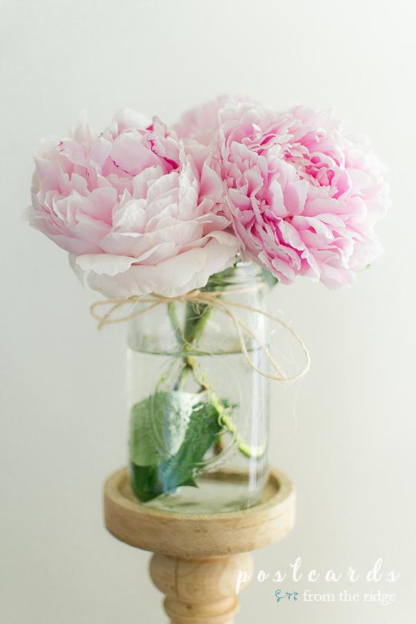 pink peonies in a mason jar vase