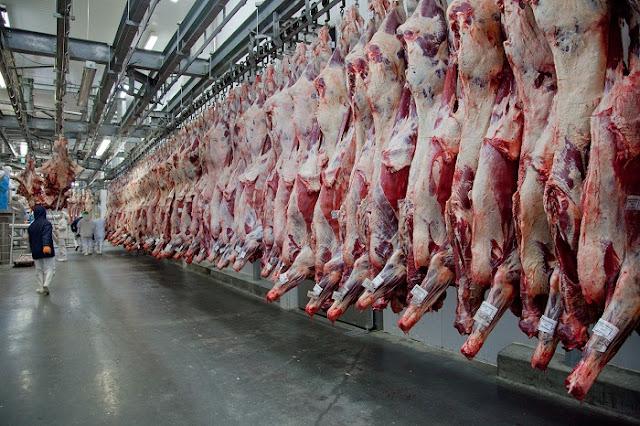 50.000 Ton Daging Sapi Brasil Bakal Masuk RI