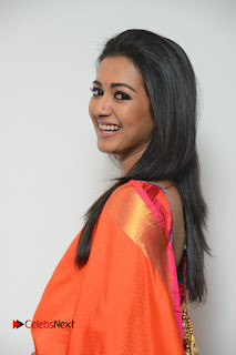 Catherine Tresa Latest Pictures in Silk Saree ~ Celebs Next