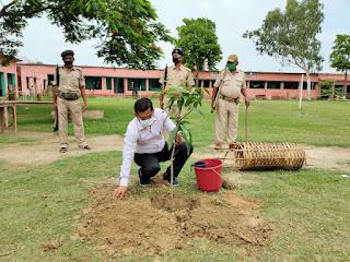 tree-planting-jaynagar