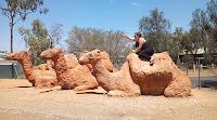 Alice Springs Public Art | Dirt Camels