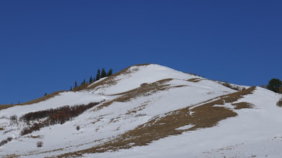 Cypress Hills, Alberta, winter, landscape, Eagle Butte